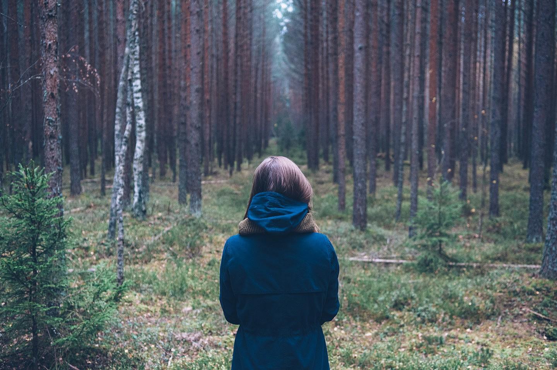perdida-bosque